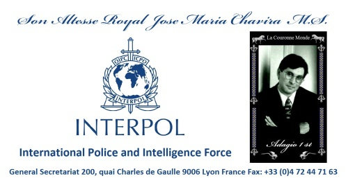 INTERPOL International Police and Intelligence force 1